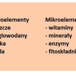 Białka, tłuszcze i węglowodany (BTW)