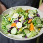 WNZO 068: Zmiana diety i zdrowie – 3 prawdziwe historie