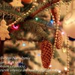 Boże Narodzenie 2015