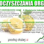4 efekty mojego oczyszczania organizmu