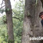 WNZO 058: Co skrywa w sobie dieta paleo?